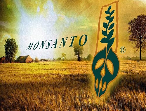 The Complete History of Monsanto by Global Research