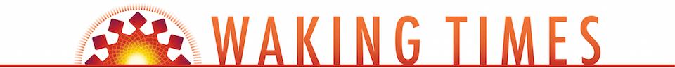 WT-Logo-Color-Orange-Red-Fade-1