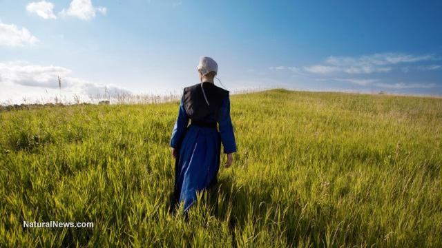 Amish-Girl-Field