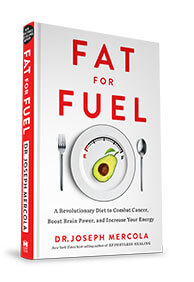 fat-for-fuel-smallbook