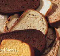 Assorted-Slices-Of-Bread-Wheat-Multi-Grain-650X