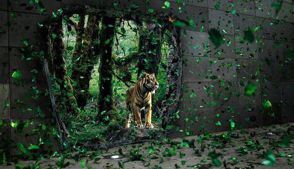 Tiger-Matrix