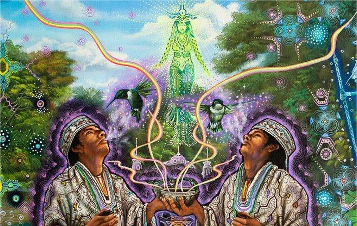 7-shaman-herbs-1111